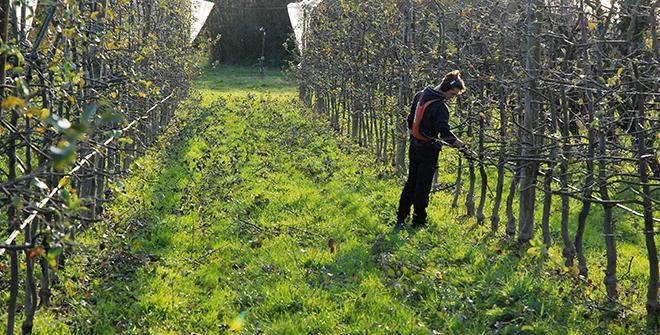 La FNSEA lance une plateforme digitale d'offre de services pour les salariés agricoles. Photo O.Lévêque/Pixel6TM