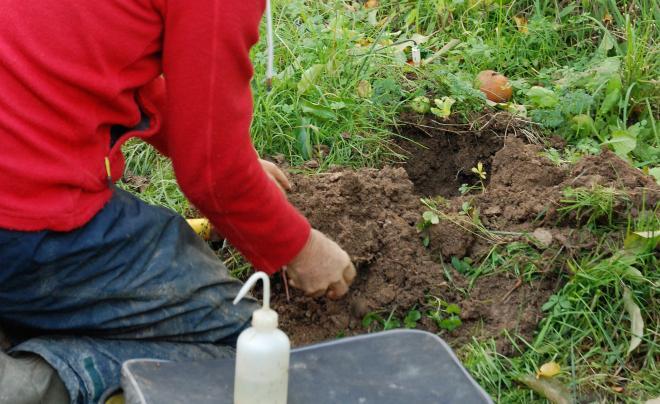 La fondation Earthworm annonce la création du premier indicateur de mesure de la santé des sols agricoles. Photo : O.Lévêque/Pixel6TM