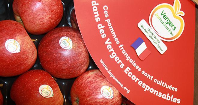 Avec une première campagne télé programmée mi-novembre, l'Association nationale pommes poires (ANPP) espère bien renforcer la notoriété du label Vergers écoresponsables lancé il y a 4 ans.