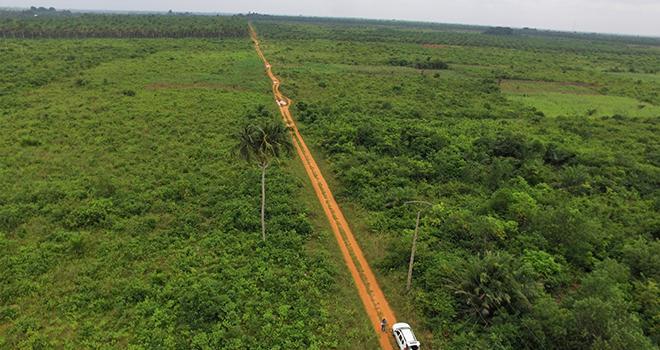 Terrain de la future exploitation maraîchère « Les Primeurs du Bénin » suivie par Divatec. Photo : Divatec