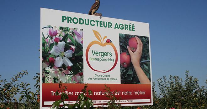 Depuis 2013, l'adhésion à la démarche Vergers écoresponsables offre une équivalence de certification HVE de niveau 2. Photo ANPP