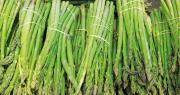 Les asperges du Sud sont particulièrement appréciées des consommateurs et reconnues pour leurs qualités gustatives. Photo : Fotolia