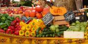 L'Observatoire du commerce de détail spécialisé en fruits et légumes frais se penche, chaque année, sur la population des détaillants spécialisés en fruits et légumes, en magasin et sur marché.