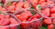 Les variétés françaises sont souvent plus qualitatives, donc plus chères que les produits importés. Photo : Martincp/Adobe stock