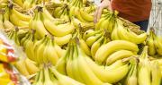 La banane a fait partie des « produits refuges » pendant cette période de crise sanitaire, selon l'AIB. Photo paul_burns/Adobe stock