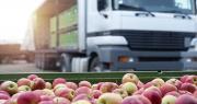 Si la ligne ferroviaire venait à être supprimée, ce sont 20 000 camions supplémentaires qui devraient transporter chaque année des fruits et légumes entre Perpignan et Rungis. Photo : littlewolf1989/Adobe Stock