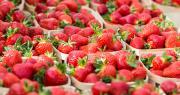 Les producteurs français multiplient les dons de fruits aux personnels soignants pour les soutenir. Photo : Pictures news/Adobe stock