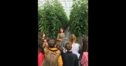 Lors de ces portes ouvertes, les producteurs de tomates sous serre expliquent aux collégiens leurs méthodes de cultures et leurs innovations. Photo : Prince de Bretagne