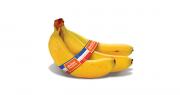 Après la banane française et la banane française équitable, c'est la banane française bio qui sera sur les étals en 2019. Photo : Banane de Guadeloupe et de Martinique.