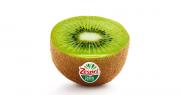 """Le logo est revisité avec l'utilisation d'un éventail vert, inspiré par la coupe transversale d'un kiwi avec différentes nuances de reflets, et la marque en rouge, """"reflétant l'énergie et le dynamisme de la marque Zespri"""". Photo : DR"""