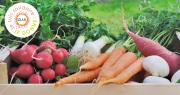 L'an passé, plus de 2 000 tonnes ont été données par le secteur agricole, par l'intermédiaire de Solaal, aux associations d'aide alimentaire (soit 500 tonnes par rapport à 2018). Photo : coco/Adobe Stock