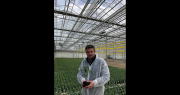 Nicolas Paul devient le nouveau président du groupe Thomas Plants. Photo : groupe Thomas Plants
