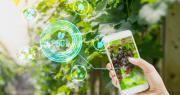 Smart Agri Food Innovation s'adresse aux start-up et aux entreprises innovantes dans les secteurs technologiques et numériques en lien avec l'agriculture, la viticulture et l'alimentation. Photo : lamyai/Fotolia