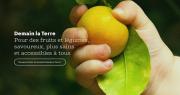 Un nouveau site Internet comme nouvelle vitrine pour valoriser les engagements des adhérents de Demain La Terre.