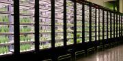 La création de ce potager urbain indoor s'inscrit dans une démarche RSE engagée par Métro depuis 2011. Photo : Métro