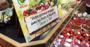 Le partenariat entre Demain la Terre et Saveurs Commerce permettra aux produits Demain la Terre d'être mis en avant chez les primeurs. Photo : Demain la Terre / Saveurs Commerce