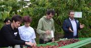 Lancement de la campagne 2019 en cerise sur l'exploitation agricole du campus Louis Giraud qui forme les professionnels de demain. Photo : C.Even/Pixel6TM