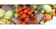 La branche fruits et légumes n'a pas profité de l'embellie économique générale du secteur agricole en 2017. Photo : B.Bosi/Pixel Image