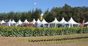 Le Salon Tech&Bio s'est tenu sur les terres du lycée agricole du Valentin, à Bourg-lès-Valence. Photo : C.Even/Pixel6TM