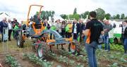 Le Salon Desherb'Expo a attiré 650 personnes le 1er juin dernier à Brain-sur-l'Authion. Photo : O.Lévêque/Pixel Image.
