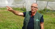 Après les fruits, les Côteaux Nantais se lancent dans les légumes, présente Michel Delhommeau, responsable de l'exploitation. Photo O.Lévêque/Pixel Image