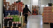 Cette période de crise inédite du Covid-19, « aura un impact économique et social pour la filière des fruits et légumes frais », souligne Laurent Grandin, le président d'Interfel. Photo : O.Lévêque/Pixel6TM