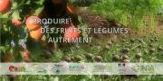 Le GIS Fruits vient de mettre en ligne sur son site le film « Produire des fruits et légumes autrement ». Photo : DR
