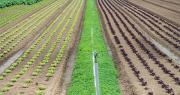 Les internautes, et notamment les agriculteurs, sont appelés à participer à la consultation publique sur le plan Écophyto II+ visant à la réduction de l'utilisation des produits phytosanitaires. Photo : focus finder