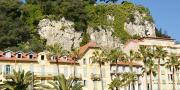 Le 12 octobre dernier, la présence de la bactérie Xylella fastidiosa a été confirmée sur un polygale à feuille de myrte (Polygala myrtifolia) planté sur un terre-plein central de la ville de Nice.