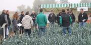 Le 25 octobre dernier, plus de 230 professionnels de la filière poireaux française se sont réunis à Soings-en-Sologne pour la Journée nationale poireaux.