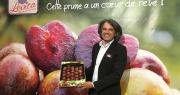 Sébastien Guy, en charge du service commercial chez French Fruit Lovers, a annoncé lors du Medfel 2019 que les premières prunes Lovita seraient commercialisées en septembre 2019. Photo : B.Bosi/Media&Agriculture
