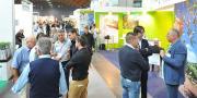 À l'occasion du Salon italien Macfrut, l'interprofession des fruits et légumes italiens a organisé un colloque sur la question de la coordination européenne des filières.