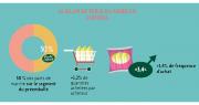 L'endive est dans une dynamique positive en termes de consommation, avec un nombre d'acheteurs stable et une progression des quantités achetées (+1,2%) comme de la fréquence d'achat (+2,1%), indique Perle du Nord dans un communiqué. Photo : DR