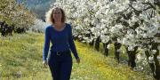 Pour sa campagne de com' 2015, l'AOP cerise de France a choisi quatre productrices pour défendre leur terroir. Sur la photo: Marie-Claude Salignon, productrice dans le secteur du Ventoux.