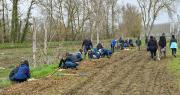 Les plantations ont été réalisées sous forme de chantiers collaboratifs, avec l'aide de salariés de Blue Whale et des bénévoles des associations « Campagnes Vivantes », WWF et « Nature en Occitanie ». Photo : Didier Taillefer