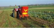 L'entreprise vendéenne Rabaud vient de mettre au point un nouvel épandeur de compost pour vigne et maraîchage, qui permet également de réaliser du paillage sur le rang. Photo : Rabaud