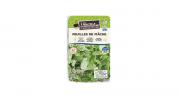 Les barquettes de feuilles de mâche La Nouvelle Agriculture® sont disponibles en grandes et moyennes surfaces depuis janvier 2021. Photo DR