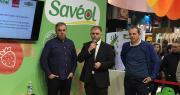 Pierre-Yves Jestin (Savéol), Christophe Rousse (Solarenn) et Joseph Rousseau (Prince de Bretagne) ont annoncé le lancement d'une association commune. Photo : B.Bosi/Pixel Image