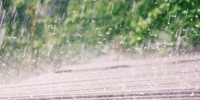 Le 15 juin dernier, de violentes chutes de grêle ont touché de nombreuses exploitations agricoles dans la région Auvergne - Rhône-Alpes. Photo : Andrey Solovev/Adobe stock
