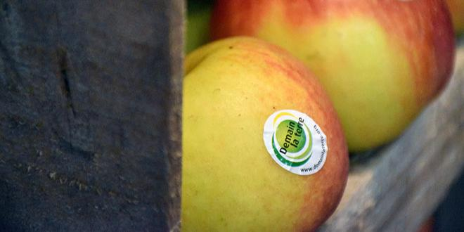 Demain la Terre poursuit son ambition de voir ses exploitations membres obtenir la certification HVE. Photo : O.B
