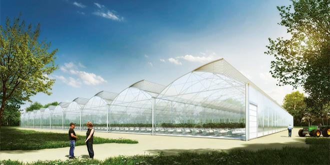 La nouvelle offre GreenPush BioActiv inclut un système de gestion du climat haute technologie pour faciliter la création de conditions favorables à la lutte intégrée. CP : DR