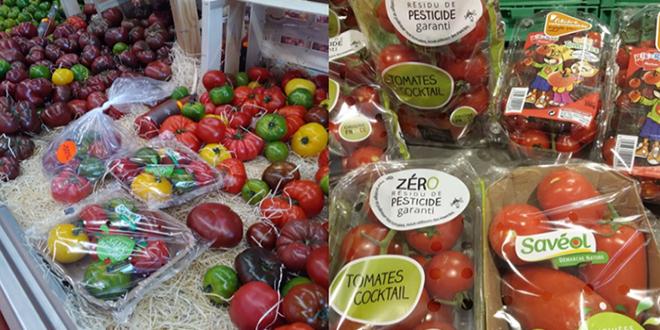 Une étude intitulée « Démarche « sans ou zéro » entre le bio et le conventionnel : perception et attentes des consommateurs de tomates » a été réalisée par le CTIFL. Photo : C.Baros